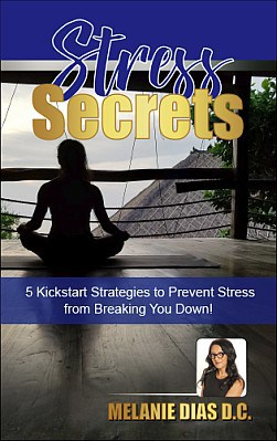 stress secrets book